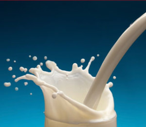 Many dairy products contain Carageenan. This food  additive is now linked to colon cancer.