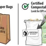 ARE YOUR BIOPLASTICS REALLY BIO-BASED?? LEARN YOUR LABEL'S