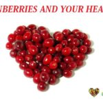 cranberries and urinary infection - http://eco-savy.com