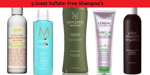 Sulfate Free Shampoo  EcoSavy
