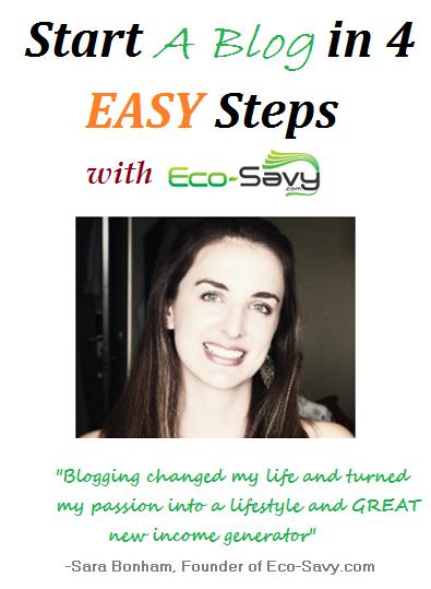 eco-savy start a blog