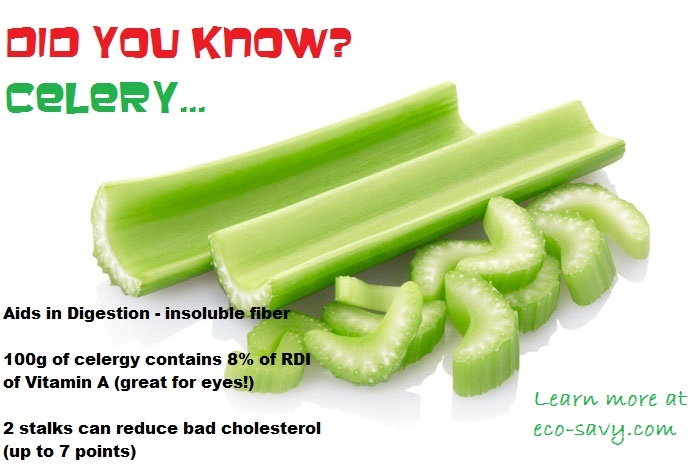 270678-celery